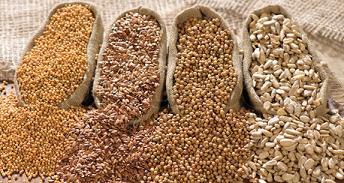 Bulk Seed
